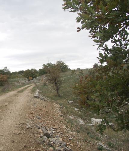 i labirinti degli antichi armenti