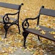 autunno_1.jpg