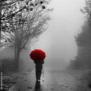 Fuori Piove