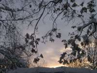 Confinando l'inverno