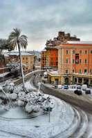 Roma_Candida